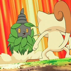 Burmy vs Meowth.