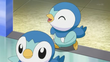 EP826 Piplup