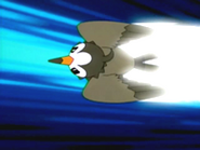 EP472 Starly usando ataque rápido