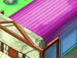 Gimnasio Pokémon de Ciudad Plateada