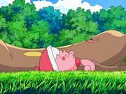 EP553 Sudowoodo y Happiny tumbados en la hierba