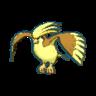 Pidgeot XY variocolor