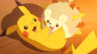 EP949 Pikachu y Togedemaru jugando