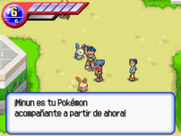 Pokémon Ranger Pokémon Acompañante