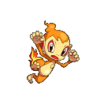 Chimchar Conquest