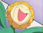 EP137 Sunflora de Joy