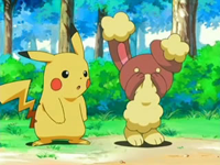 EP478 Pikachu con Buneary