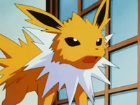 EP228 Jolteon