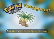 EP224 Pokémon