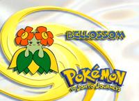 EP123 Pokemon