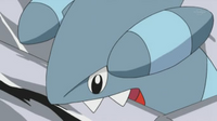 EP626 Gible usando mordisco