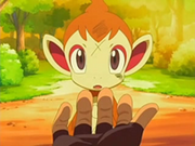 EP520 Chimchar ante la posibilidad de seguir a Ash