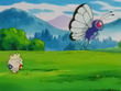 EP235 Togepi siguiendo a Butterfree