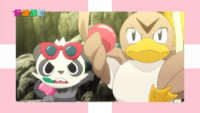 EP904 Gran espectáculo Pokémon Poké TV