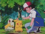 EP134 Chikorita y Pikachu