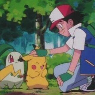Chikorita celosa de Pikachu.