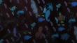 EP828 Pokémon empujando el barco