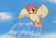 EP040 Pidgeotto de Ash usando tornado