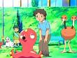 EP468 Pokémon y coodinadores