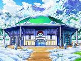 Gimnasio Pokémon de Ciudad Puntaneva