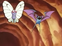 EP006 Butterfree y Zubat