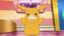 EP885 Pikachu disfrazado de Psyduck