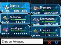 Equipo Pokémon NB