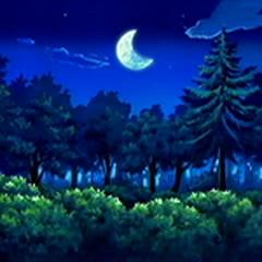 EP433 Bosque en la noche.png