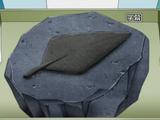 Fósil pluma