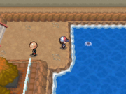 Sombra de los Pokémon en el agua