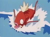 EP016 Magikarp de James