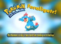 EP210 Pokémon