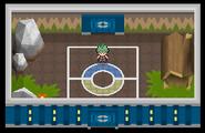 Liga Pokémon (Sinnoh) Sala Alecrán Pt