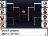 Torneo Campeones