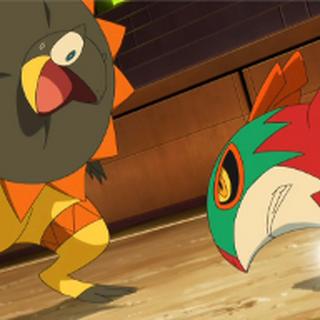 Hawlucha vs. <a href=