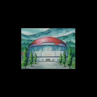 El  Gimnasio Pokémon de Ciudad Trigal entrena Pokémon de <a href=