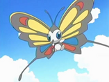 EP548 Beautifly de Aura