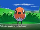 Pokémon salvaje