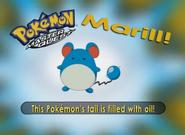 EP219 Pokémon