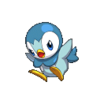 Piplup Conquest