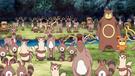 P11 Pokémon del bosque (2)