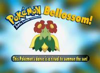 EP186 Pokémon