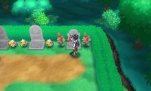 Pokévisor Cementerio de Hauoli SL