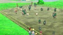EP857 Pokémon del pastizal