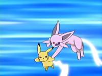 EP447 Espeon usando cola férrea contra cola férrea de Pikachu