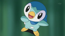 EP611 Piplup