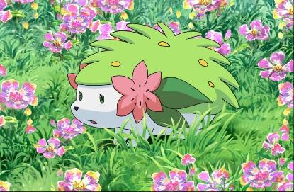 Archivo:P11 Shaymin en un campo de flores.jpg