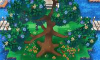 Árbol de A. Z. ROZA