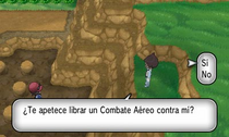 Combate aéreo XY