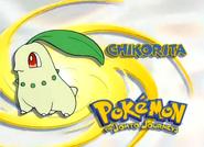 EP119 Pokemon